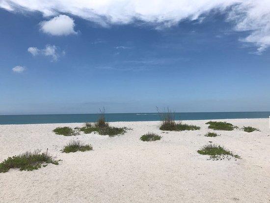 Boca Grande, Floride : photo0.jpg