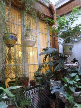 Pension Zurita : patio d'accès aux escaliers