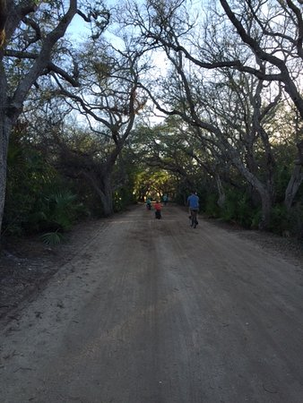 """North Beach Camp Resort: The """"sandy"""" roads are perfect if you like a natural setting"""