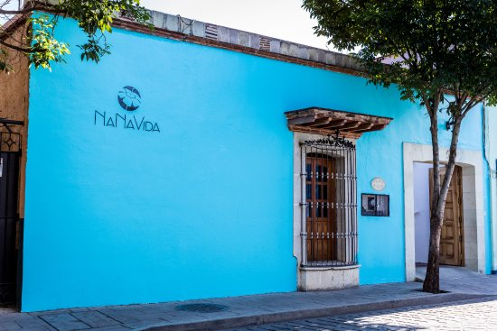 Hotel Nana Vida