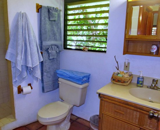 Harbour Club Villas & Marina: Bathroom with lots of towels and beach towels too