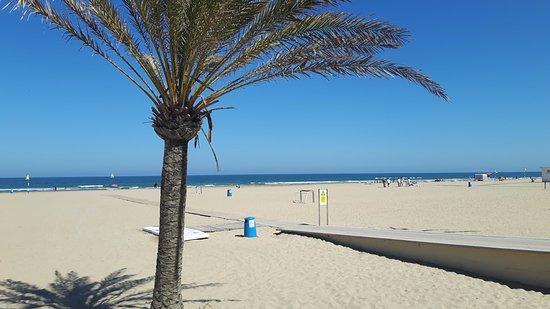 Playa Gandia: Praia de Gandia