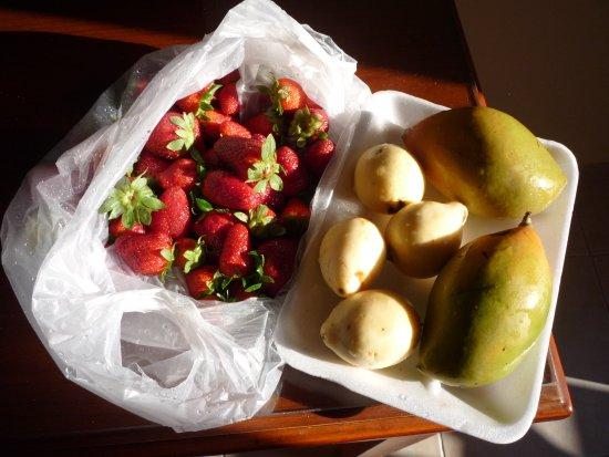Old Market: Манго, гуава и клубника