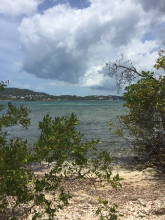 Virgin Islands Ecotours: View from the hiking trail