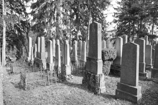 Trebic, Republika Czeska: zidovsky hrbitov1