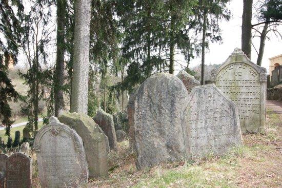 Trebic, Republika Czeska: zidovsky hrbitov3