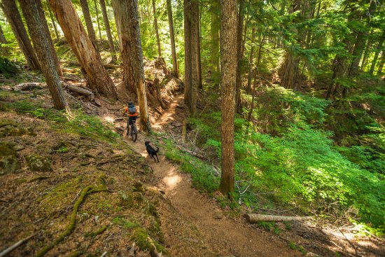 Bend, OR: Mountain Biking