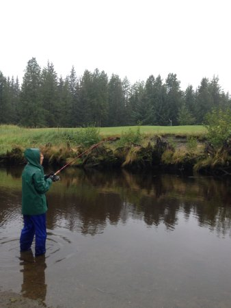 Gustavus, AK: Casting at a bend in the river