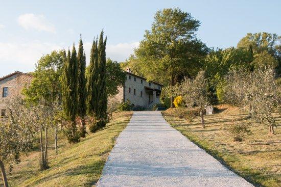 San Giustino Photo