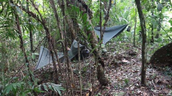 Stann Creek, Belize: photo5.jpg