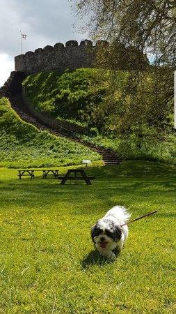 Totnes, UK: photo4.jpg
