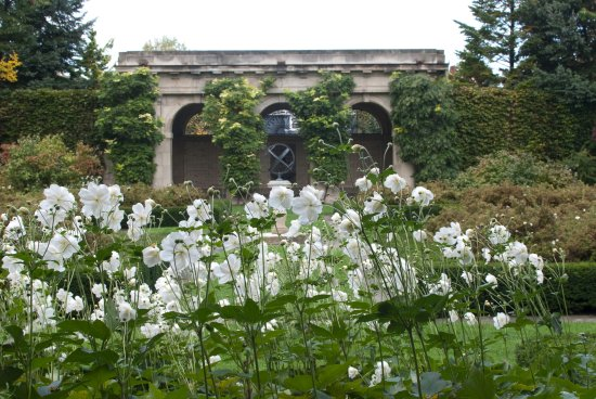 George Eastman Museum: One of the several gardens
