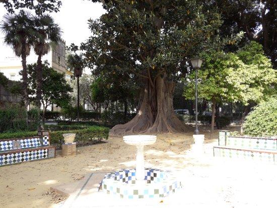 Jardines de murillo picture of jardines de murillo for Jardines de murillo