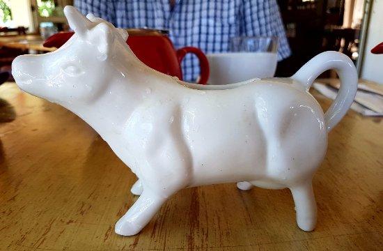 Clifton Beach, Australia: Cute milk jug