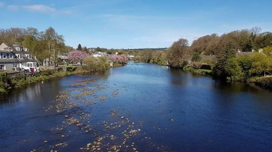 Newton Stewart river view