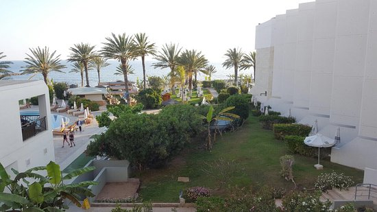 Constantinou Bros Athena Beach Hotel: photo2.jpg