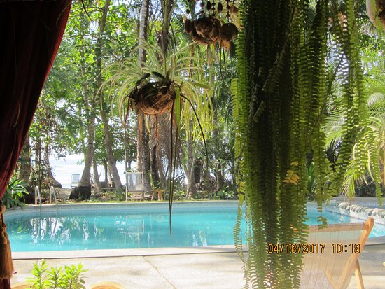 Cabuya, Kosta Rika: View of the pool from the restaurant