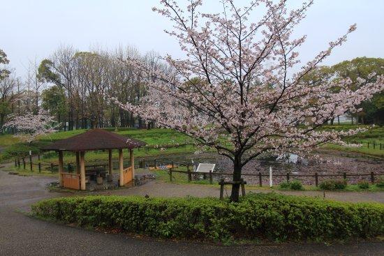 Kariya, Jepang: 公園内の様子