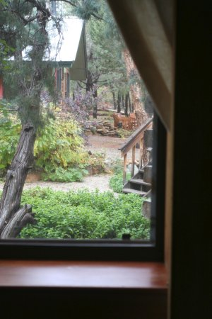 Mancos, CO: Lakehouse bedroom view to garden