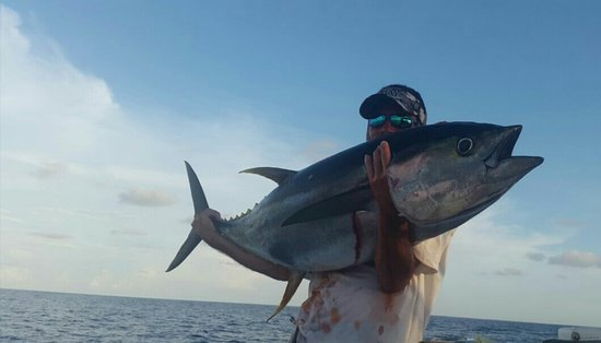 """Quepos, Costa Rica: He is our Captain """"Parejito"""" with his Yellowfin Tuna!"""
