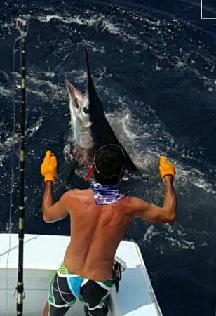 Quepos, Costa Rica: fighting with a sailfish, we practice Catch & Release!