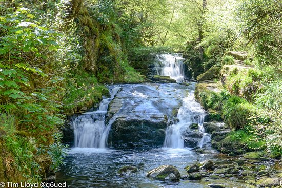 Lynmouth, UK: Watersmeet Trail