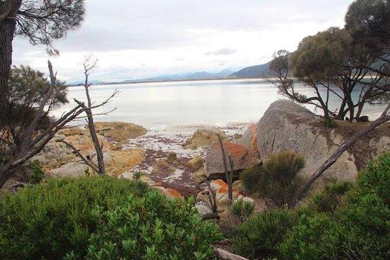 Flinders Island, ออสเตรเลีย: overlooking Fotheringate Beach