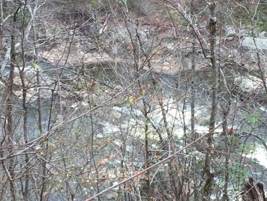 Lithia Springs Picture