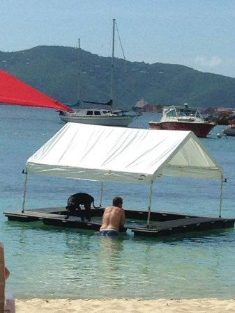 Water Island, St. Thomas: floating bar