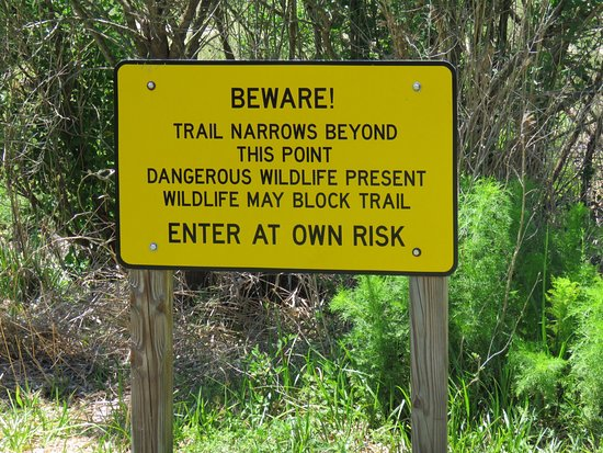 Micanopy, FL: photo6.jpg
