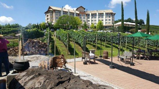 Hotel & Spa do Vinho, Autograph Collection: IMG-20170128-WA0006_large.jpg