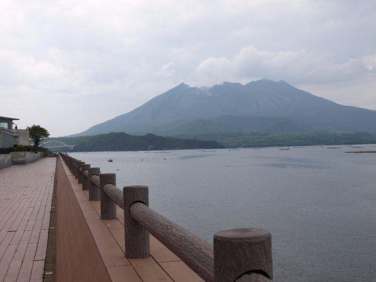 Tarumizu Hotels