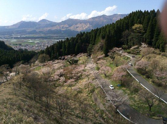 Takamori-machi, اليابان: 千本桜を俯瞰する