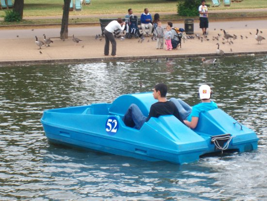 Pedalo. - Picture of Serpentine Boating Lake, London - Tripadvisor