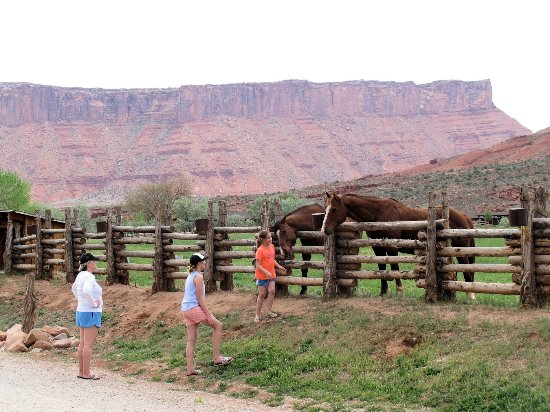 Red Cliffs Lodge: having fun in the magnificent landscape