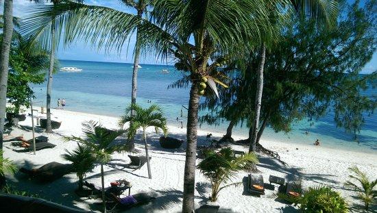Ocean Vida Beach & Dive Resort: IMG-20170424-WA0000_large.jpg
