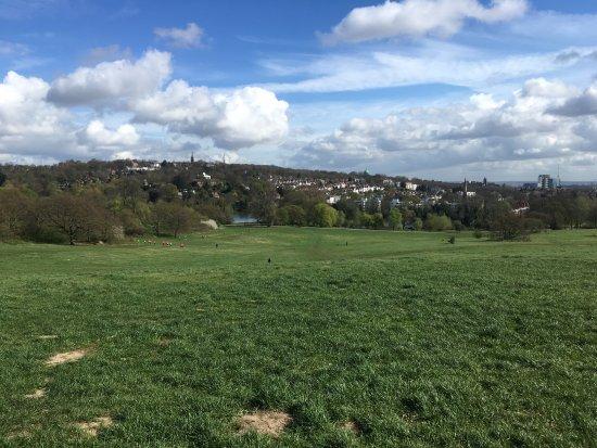 open fields southwest side of Hampstead Heath