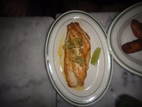 Fish picture of havana 1957 cuban cuisine brickell - Cuban cuisine in miami ...
