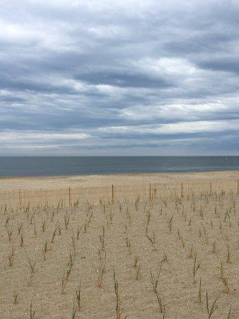 Rehoboth Beach Boardwalk: photo1.jpg