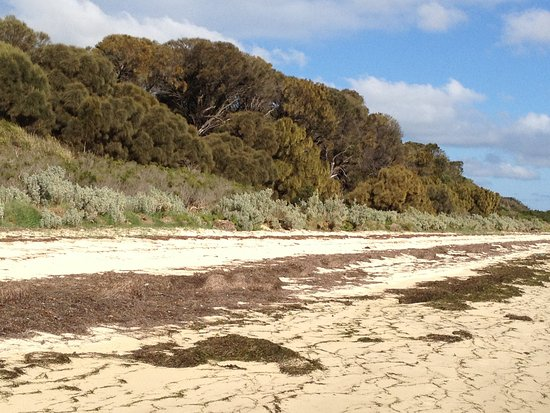 French Island, Australia: Sand dune and coastal heathland
