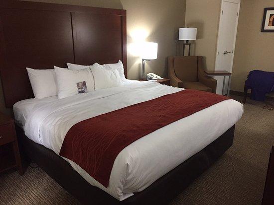 Eden Prairie, MN: King bed