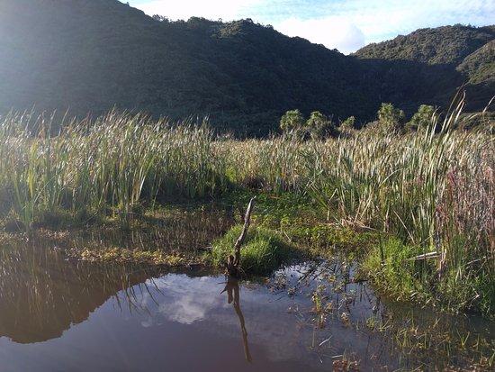 Pararaha Valley Track