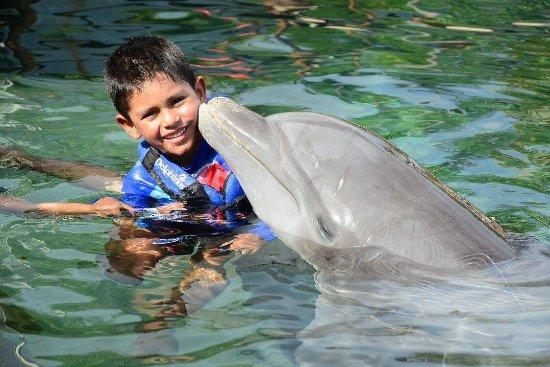 Delphinus Riviera Maya : photo1.jpg
