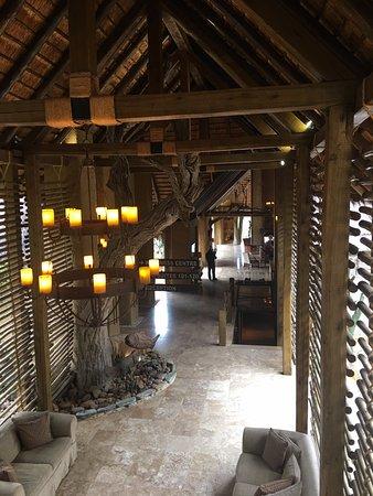 Kapama River Lodge: Espacio común