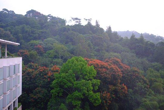Padma Hotel Bandung: awesome scenery
