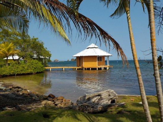Mango Creek Lodge: Quait yet comfortable cabanas over the water