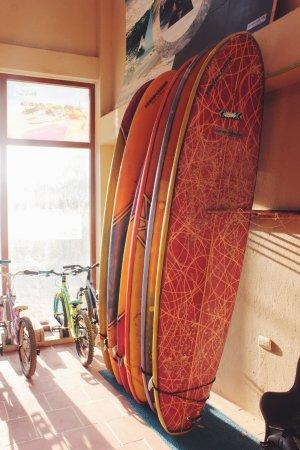Puerto Villamil, Ecuador: Longboards