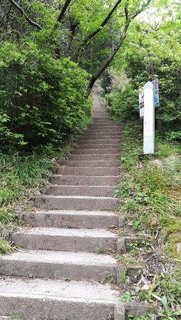 Chiba Prefecture, Japón: IMG_20170424_063252_large.jpg
