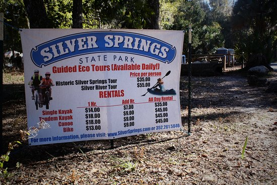 Silver Springs, FL: have some fun