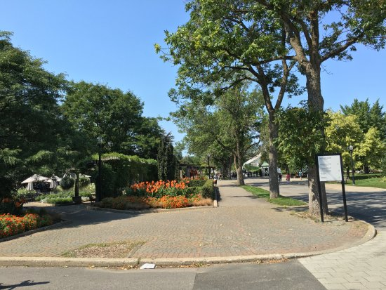 Jardin botanique de montreal photo de basilique notre for Jardin botanique montreal tarif